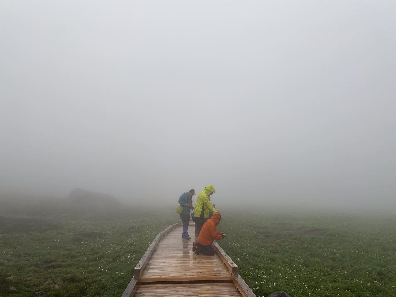 7月9・10日にyama楽のイベントで乗鞍岳に行ってきました。