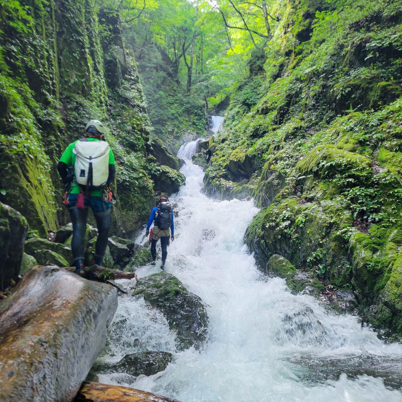 先日のお休みは奥多摩の唐松谷ど沢登りをしてきました。