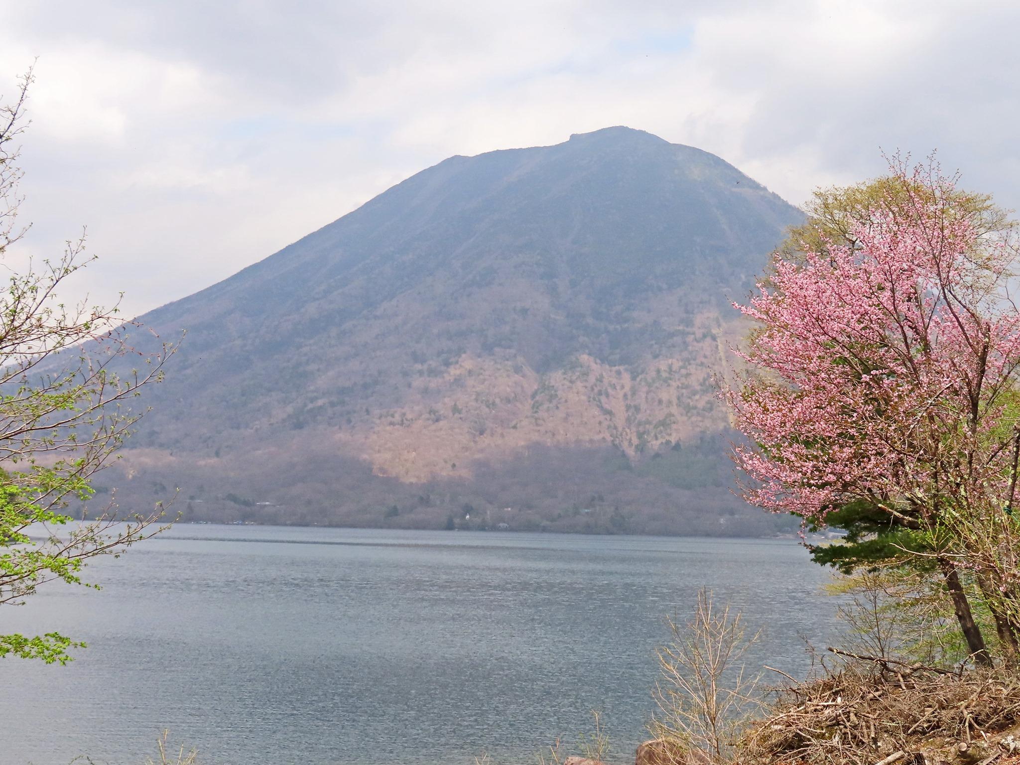 5/9(日)花と温泉トレッキング教室にて日光半月山に行ってきました