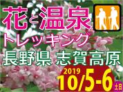 2019.10.5-6 花と温泉トレッキング 長野県 志賀高原(バスツアー)