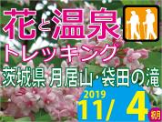 ◆催行中止◆ 2019.11.4 花と温泉トレッキング 茨城県 月居山(バスツアー)
