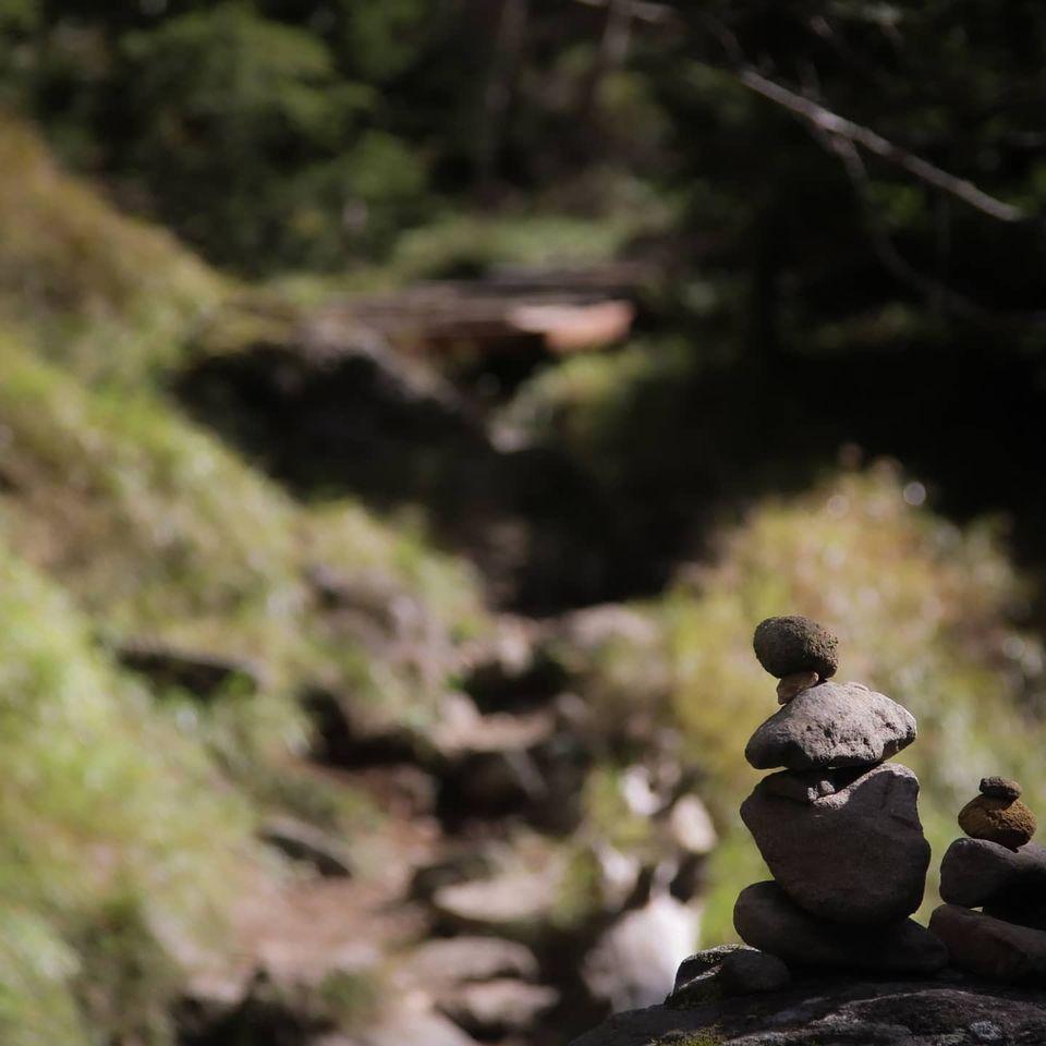 先日のお休みに一人でふらっと八ヶ岳に日帰りで行ってきました