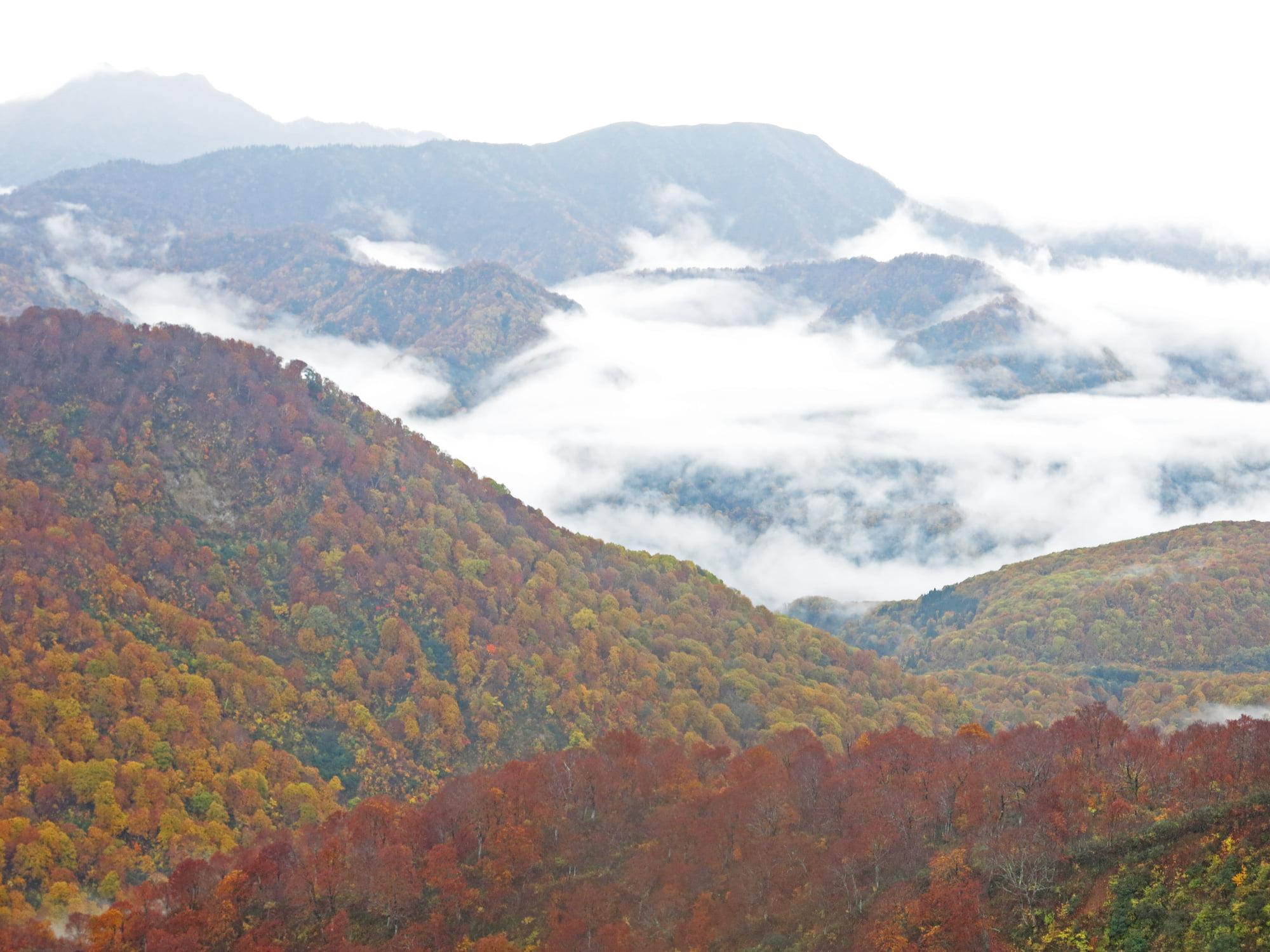 2020.10.22-23、雨飾山に行ってきました☆(その2)