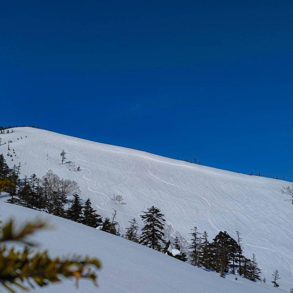 先週かぐらへスキーに行ってきました。