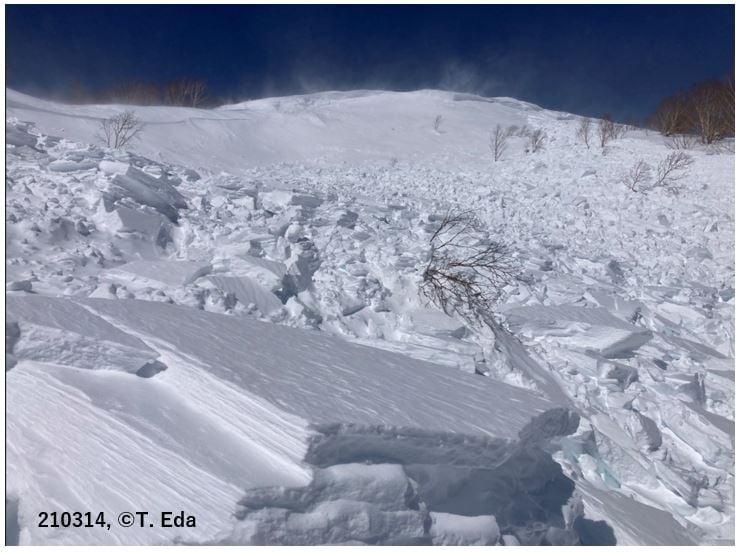 乗鞍岳で発生した雪崩事故の現地調査の速報