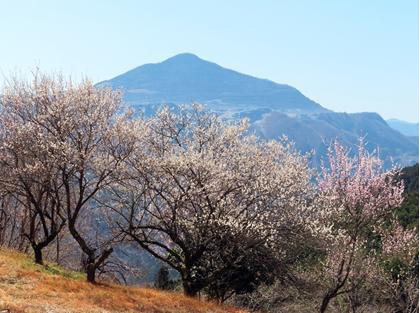 暖かくなってきましたね~\(^o^)/ 春ですね~✤✤✤