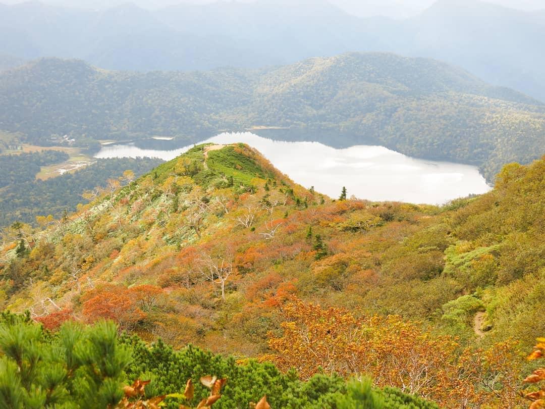 秋の兆し、色づく紅葉「JOYトレイル・燧ヶ岳編」
