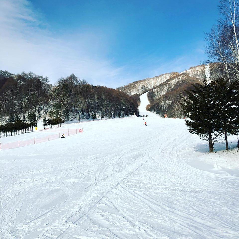 1/22-23滑りまくりミニ。雪に恵まれてます。
