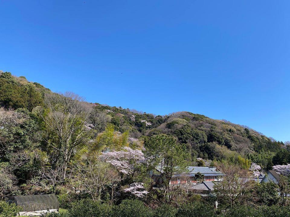 神奈川県某所にあるボルダーに行ってきました