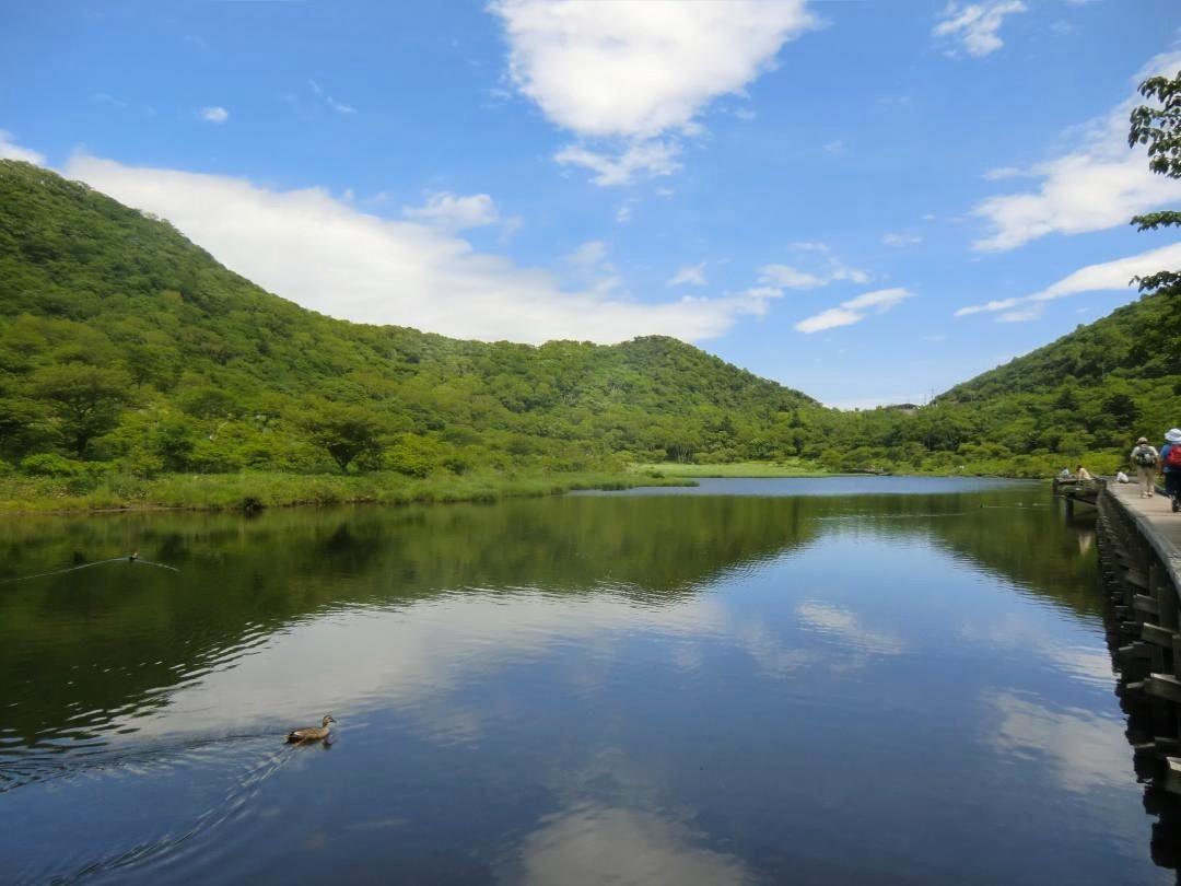 2020.7.12 花と温泉トレッキング H7 群馬県 赤城/覚満淵・八丁峠