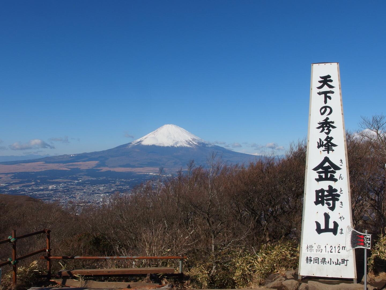 2020.11.5 花と温泉トレッキング H11 神奈川県 金時山
