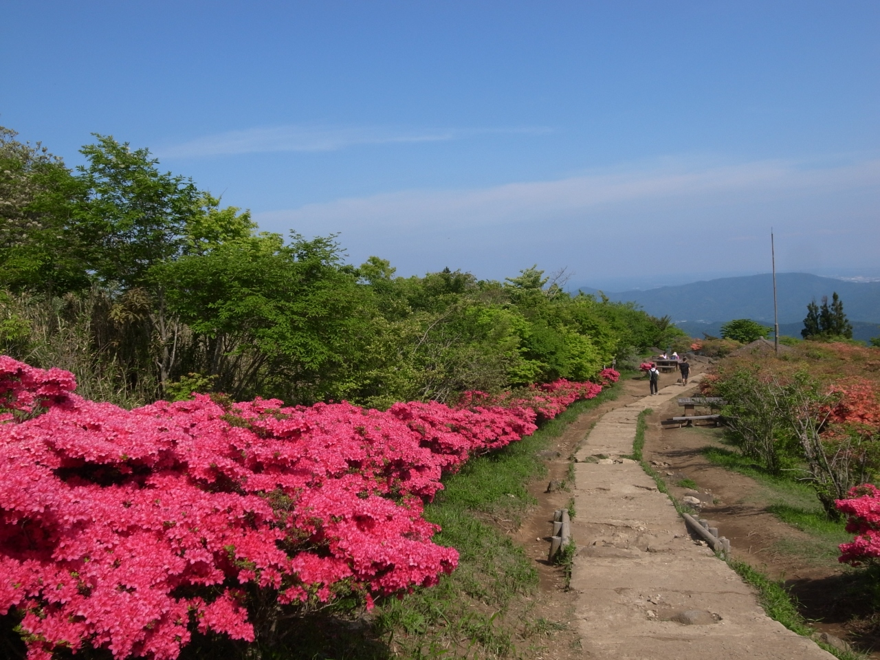 【中止】2020.5.17 JOYトレイル J5 茨城県 筑波山